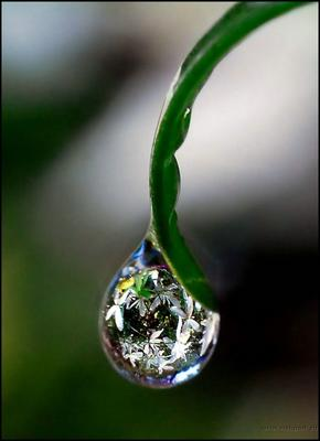 https://appliedalliance.files.wordpress.com/2014/09/03abc-depression-water21.jpg